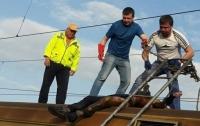 На Киевщине погиб молодой зацепер, делавший селфи на крыше электрички