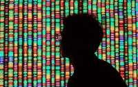 В Украине хотят создадуть базу ДНК