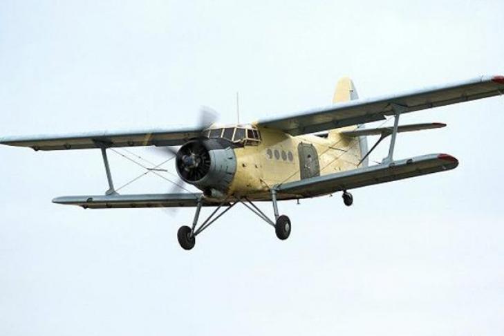 Ан-2 рухнул вБалашихе вовремя показательных полётов