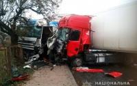 Масштабное ДТП под Житомиром: столкнулись два грузовика и легковушка, есть пострадавшие