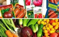 Аграрии активно скупают семена популярных овощей