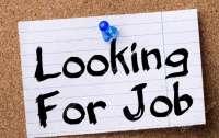 Эксперт рассказал, как бороться с безработицей