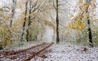 Метеоролог предупредил, что в октябре украинцам придется надевать шубы