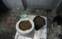Почти 33 кг янтаря изъяли пограничники