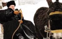Жириновский избавился от осла, над которым поиздевался в ролике