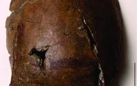 Ученые обнаружили древнейшую жертву цунами