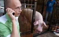 Общественность требует от КГГА назвать точную дату переезда звезды ЕВРО-2012 Фунтика в Киевский зоопарк