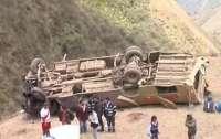 Автобус упал в пропасть: трагедия забрала десятки человеческих жизней