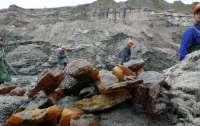 В Украине впервые выдали разрешения на добычу янтаря