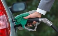 Бензин и дизельное топливо в Украине начали дешеветь