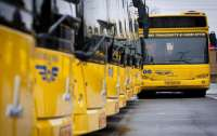 В Украине появится новая транспортная модель