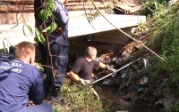 В Днепре мужчина убил и расчленил знакомого (видео)