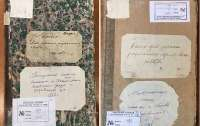 А ЦГИАК против. Зачем главный архив Киева объявил войну еврейской истории?