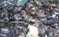 На Полтавщине неизвестные сожгли грузовик лекарств от гриппа