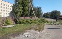 В Запорожской области на асфальт упал оголенный провод: погибла женщина