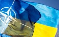 Дальнейшие реформы приблизят Украину к членству в Альянсе, - НАТО