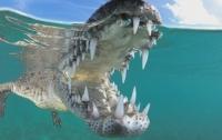 Дайвер заглянул в пасть к самому опасному крокодилу Америки (видео)