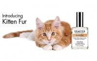 В США выпустили духи с запахом котенка