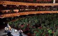 Оперный театр в Барселоне дал концерт для растений