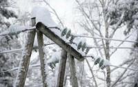 Более сорока населенных пунктов во Львовской области из-за непогоды остались без света