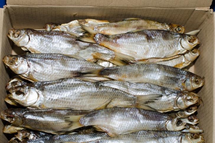 Где купить свежую рыбу недорого