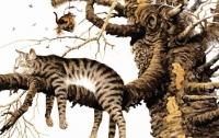 Кот загнал женщину на дерево (видео)
