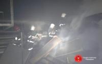 Масштабный пожар возле Ривне: пламя тушили шесть часов (видео)