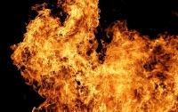Масштабный пожар в Киеве: сгорели четыре автобуса