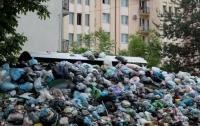 Вместо завода львовские власти решили обустроить очередной полигон для мусора