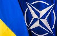 Украина подала в НАТО официальный запрос на предоставление статуса участника ПРВ