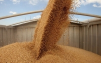 В 2018 году Украина установила абсолютный рекорд по урожайности