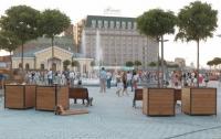 Киевлян обеспокоило то, что в здании госструктуры погибли деревья (фото)