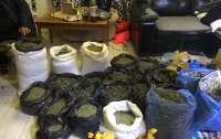 Экс-милиционер хранил дома 40 кг конопли и арсенал оружия