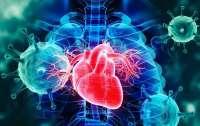 Удар по сердцу: обнародовано невероятное заявление о коронавирусе