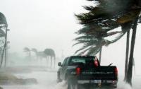 Восточное побережье США накрыли мощные штормы, погибли люди