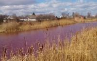 В Черниговской области появилось розовое озеро