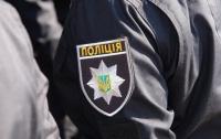 Полицейские оказались в эпицентре драки (видео)