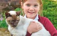 Пропавший кот воссоединился с хозяевами спустя шесть лет