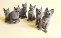 В Британии мужчина ограбил фирму на $500 тыс. и купил на них котиков