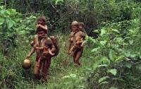 Бразильские шахтеры вырезали племя индейцев в Венесуэле