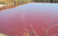 Спиртзавод на Винничине травит местных жителей сточными водами ― СМИ