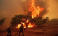В Швеции из-за поезда со сломанными тормозами загорелся лес