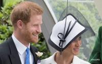 Принц Гарри и Меган Маркл завели еще одного питомца
