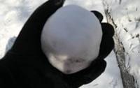 Выяснились мотивы метания снежков в «регионалов»