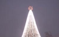 Пьяный мужчина залез на главную елку Борисполя (видео)
