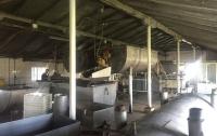 На Херсонщине разоблачили два подпольных молокозавода