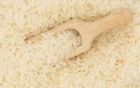 Биологи рассказали об опасности риса