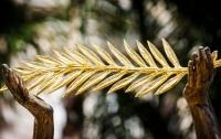Золотую пальмовую ветвь получил шведский режиссер Рубен Остлунд