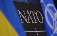 В НАТО обсудят ситуацию на Донбассе и украинскую армию