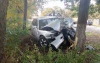 Авто врезалось в дерево под Одессой: водитель получил многочисленные травмы